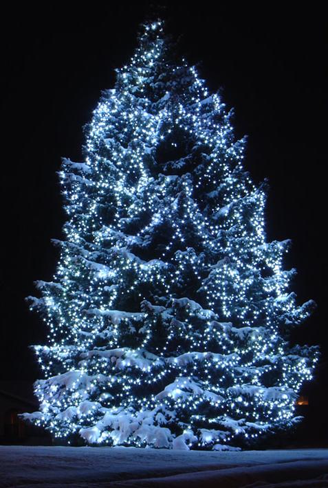 tube sapin de Noël